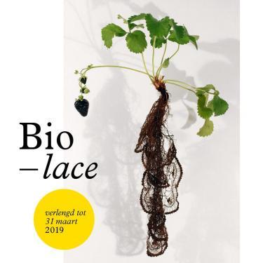 Campagnebeeld Biolace kanttentoonstelling in Texture, Kortrijk.