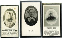 Afbeelding 1 Bidprentjes van het Nederlands Openluchtmuseum.