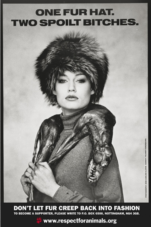 Lynx, ca. 1984. Foto: David Bailey.
