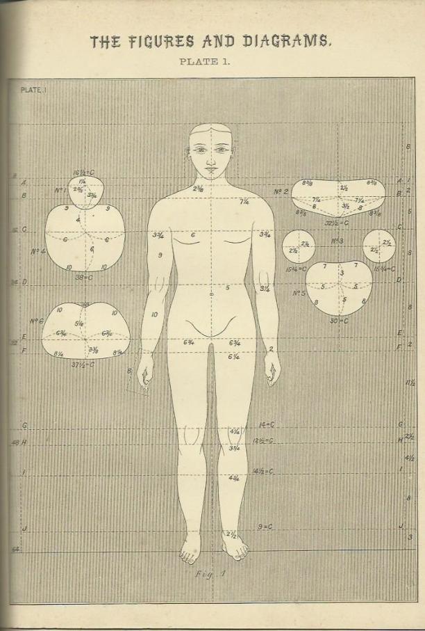 Antropometrie, plaat 1, dr. Henry Wampen