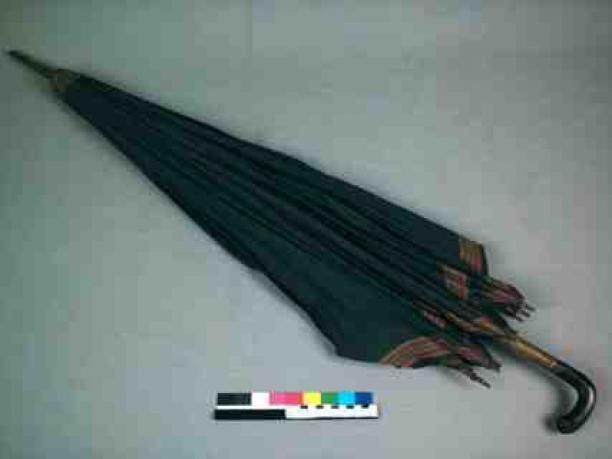 Paraplu 39 39 besteedster 39 39 handvat leeuwenkopje paraplu petrolkleurig katoen met rand van beige - Paraplu katoen ...