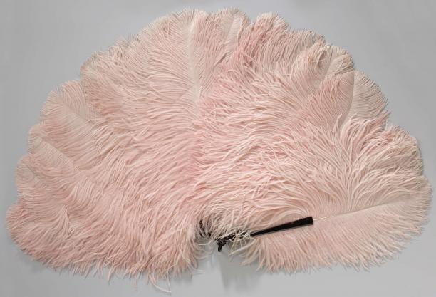 Vouwwaaier Van Roze Struisveren Op Een Montuur Van Kunststof
