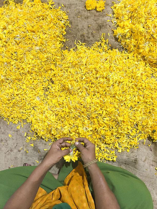 Agenda Modemuze tentoonstelling Earth Matters TextielMuseum Tilburg 2017 DOSA, Light blessings sorting marigold petals