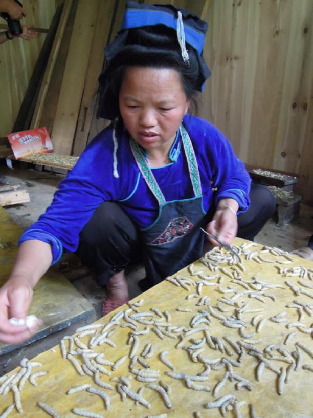 Blog Modemuze Sjoukje Telleman Symposium Zijde Textielcommissie. Productie van zijdevilt. Foto Ien Rappoldt