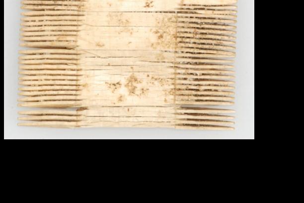 Kam uit 1750-1820. Provinciaal Archeologisch depot provincie Noord-Holland.; Beleeft het verleden, Verborgen dracht in schijnwerpers, benenkam, kam, ivoor, koeienbot, hondenbot, replica, namaken, reenactment